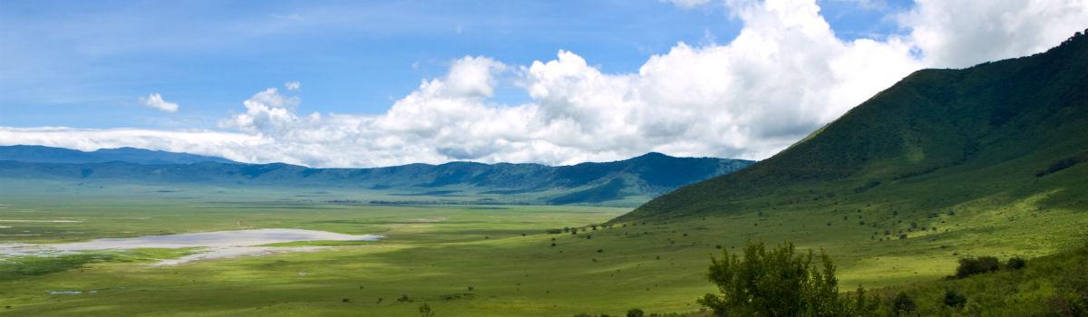 Tanzanias flotte natur
